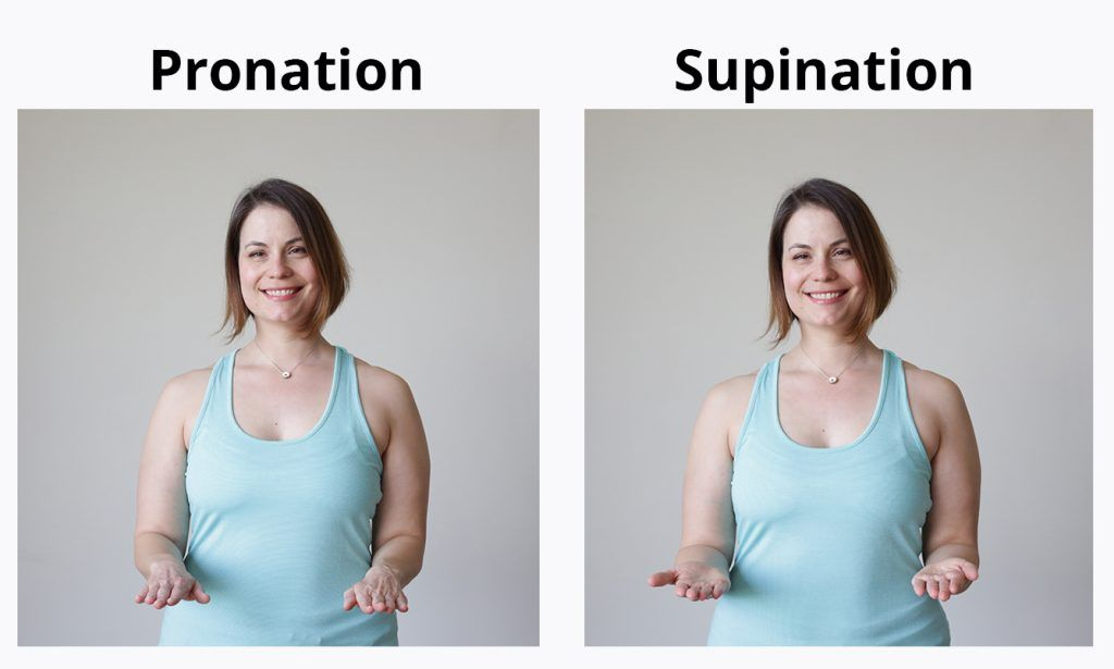Wrist pronation supination exercise examples