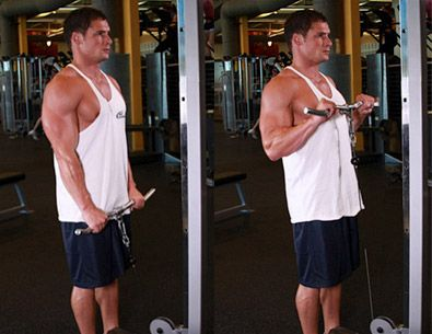 cable curl forearm workout muscle