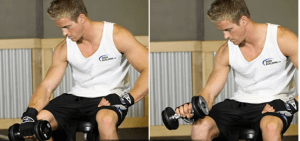 dumbell wrist curl palms down workout