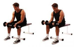 dumbell wrist exercise home