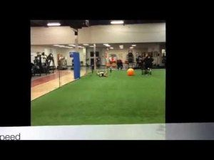 B2L Sports: Training for all